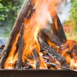 Stock Photo: Burning logs