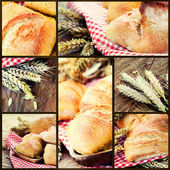 Healthy bread collage — Stock Photo