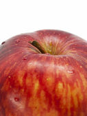 Apple close-up — Stockfoto