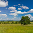 Stock Photo: View of the hilly landscape in Cotswolds, Castleton, UK