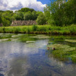 Stock Photo: Arlington Row in Bibury with River Coln, Cotswolds, Gloucestershire, UK