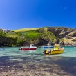 Colorful fishing boats at Harbour of Port Isaac, Cornwall, England — Stock Photo #6397189