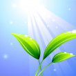 Stockvektor : Sunbeam on leaf background