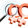 Lesbian Gender Symbols Under Magnifying Glass — Stock Vector
