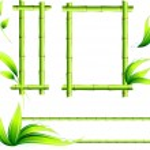 Bamboo Frames — Stock Vector
