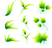 Green Leaves — Stock Vector
