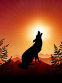 Wolf Howling on sunset background — Stock Vector