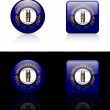Kentucky Flag Icon on Internet Button — Imagen vectorial