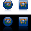 Nevada Flag Icon on Internet Button — Stock Vector