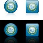 South Dakota Flag Icon on Internet Button — Stock Vector #6505890