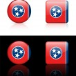 Stock Vector: Tennessee Flag Icon on Internet Button