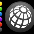 Globe icon on round internet button — ベクター素材ストック