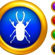 Royalty-Free Stock Vector Image: Bug icon on  buttons with golden borders