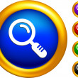 Magnifying glass icon on  buttons with golden borders - Stock Vector