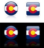 ícone de colorado no botão internet — Vetor de Stock