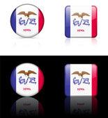 Het pictogram van de vlag van iowa op internet knop — Stockvector