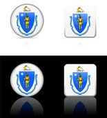 Massachusetts Flag Icon on Internet Button — Stock Vector