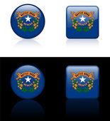 Nevada Flag Icon on Internet Button — Stock Vector
