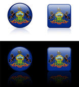 Pennsylvania Flag Icon on Internet Button — Stock Vector