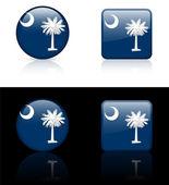 Icono bandera de carolina del sur en botón de internet — Vector de stock