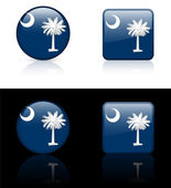 South Carolina Flag Icon on Internet Button — Vector de stock