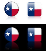 Texas Flag Icon on Internet Button — Stock Vector