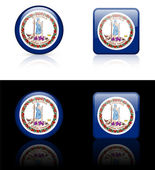 Virginia Flag Icon on Internet Button — Stock Vector