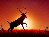 Deer ib Sunset Background — Stock Vector