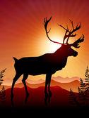 Deer ib Sunset Background — Vector de stock