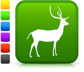 Deer Icon on Internet Button — Stock Vector