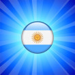 Argentina Flag Icon on Internet Button — Stock Vector