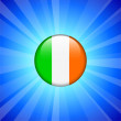Ireland Flag Icon on Internet Button — Stock Vector