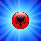 Albania bandiera icona sul pulsante internet — Vettoriale Stock