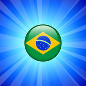 Brazil Flag Icon on Internet Button — Stock Vector