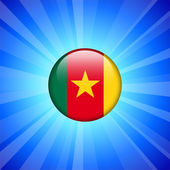 Cameroon Flag Icon on Internet Button — Stock Vector