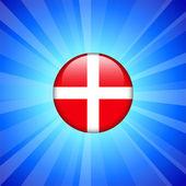 Icono bandera de dinamarca en el botón de internet — Vector de stock
