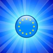 European Union Flag Icon on Internet Button — Stock Vector
