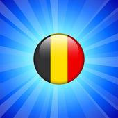 Belgien fahne ii internet-button — Stockvektor