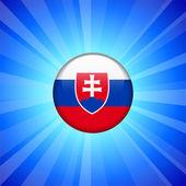 Slovakia Flag Icon on Internet Button — Stock Vector