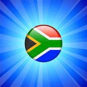 южная африка флагов на кнопку интернет — Cтоковый вектор