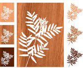 Wild fern on wooden background — Stock Vector