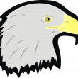 Head of an eagle — Stock Vector