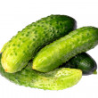 Young cucumbers — Stock Photo