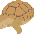 The big turtle - Image vectorielle
