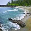 Coast of Pacific ocean in Canada — Stock Photo