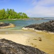 Coast of Pacific ocean, Vancouver Island, Canada — Stock Photo #6648932