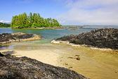 Coast of Pacific ocean, Vancouver Island, Canada — Stock Photo