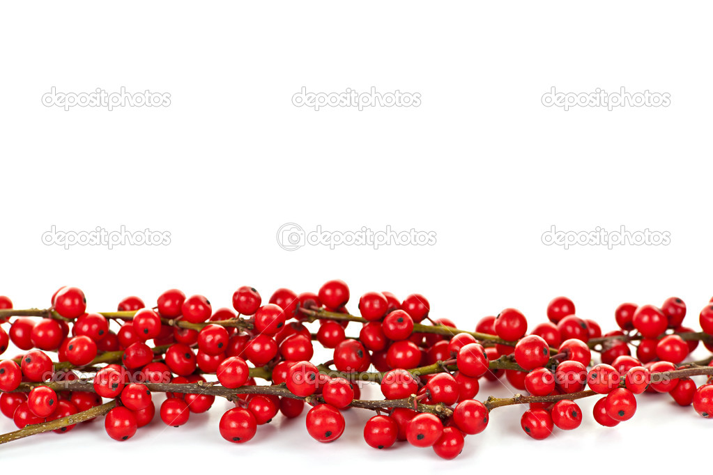 Red Christmas berries border — Stock Photo © elenathewise #6648826