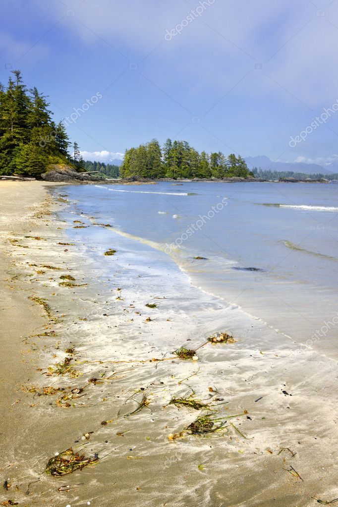 Long Beach in Pacific Rim National park, Vancouver Island, Canada — Stock Photo #6649476