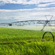 Irrigation equipment on farm field — Stock Photo